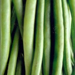 Green Beans– An Anti-Aging Veggie with Style and Substance