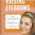 Raising Eyebrows Book cover