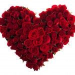 Roses for Health and Beauty