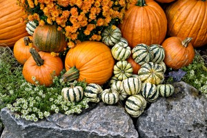 pumpkins for health and beauty